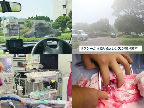 2017宮崎大学 1.jpg